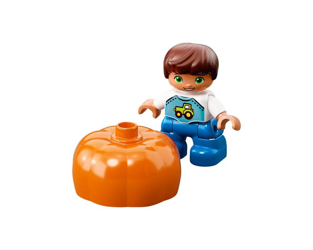 LEGO Set 10867-1 Farmers' Market