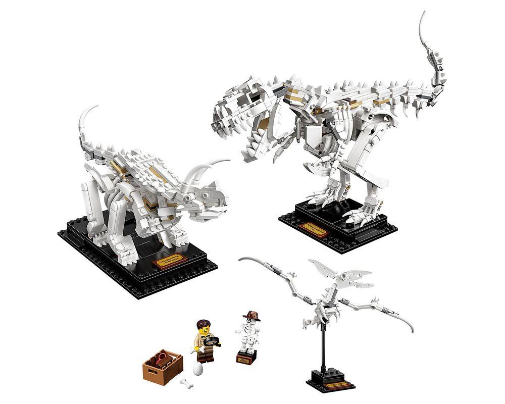 LEGO Set 21320-1 Dinosaur Fossils (Model - A-Model)